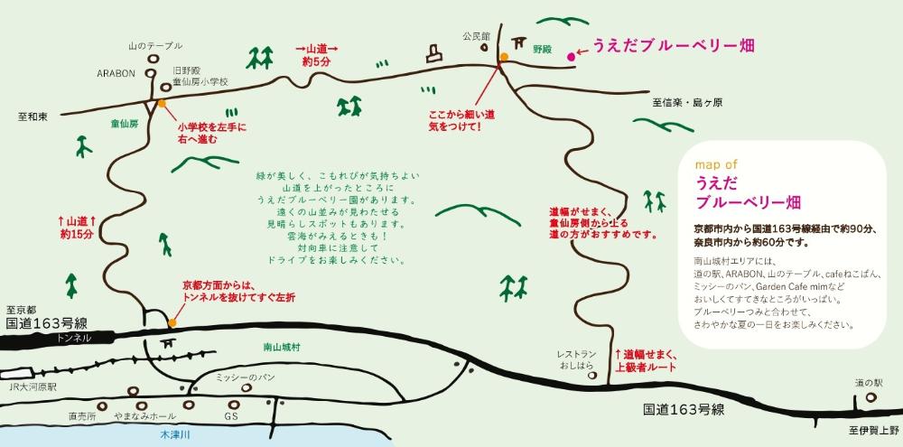 うえだブルーベリー畑 京都市内から国道163号線経由で約90分、奈良市内から約60分です。